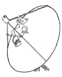 rats-rotta-peili